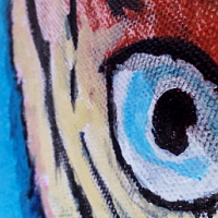 Detail_1 | Ara ararauna