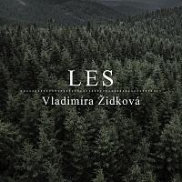 Vladimíra Židková