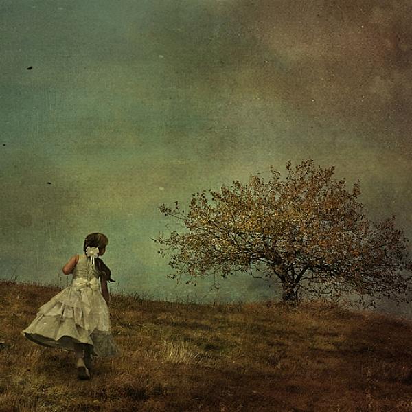 Zázračný strom | Veronika Otepková