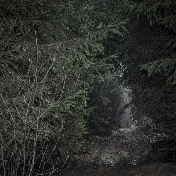 Les 2 | Vladimíra Židková