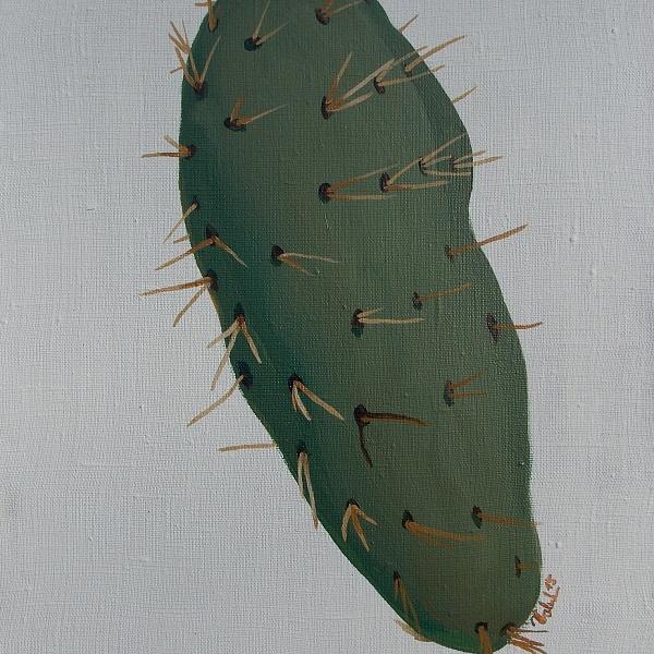 Levitující kaktus | Soňa Valentová